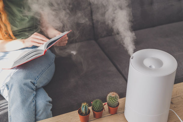 Humidifier Services in Pickerington, OH